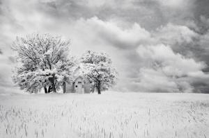 3rd Place - Monochrome - Little Church on the Hill - by Julie Lee