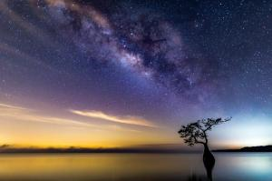 The Wayne Bennett Image of the Year - Milky Way Over Lake - by Stefan Mazzola